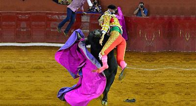 Sergio-Flores-Matador-Gored-Hard(1)