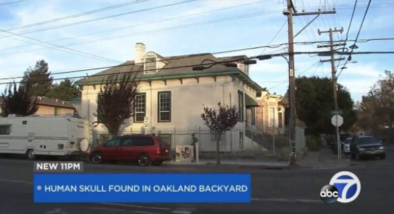 California police thought the severed human head was a Halloween prank. It wasn't