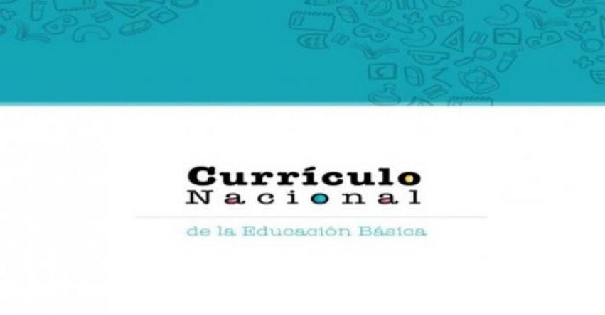 ¿Habrá Currículo Nacional aprobado para el 2019? (Hugo Diaz)