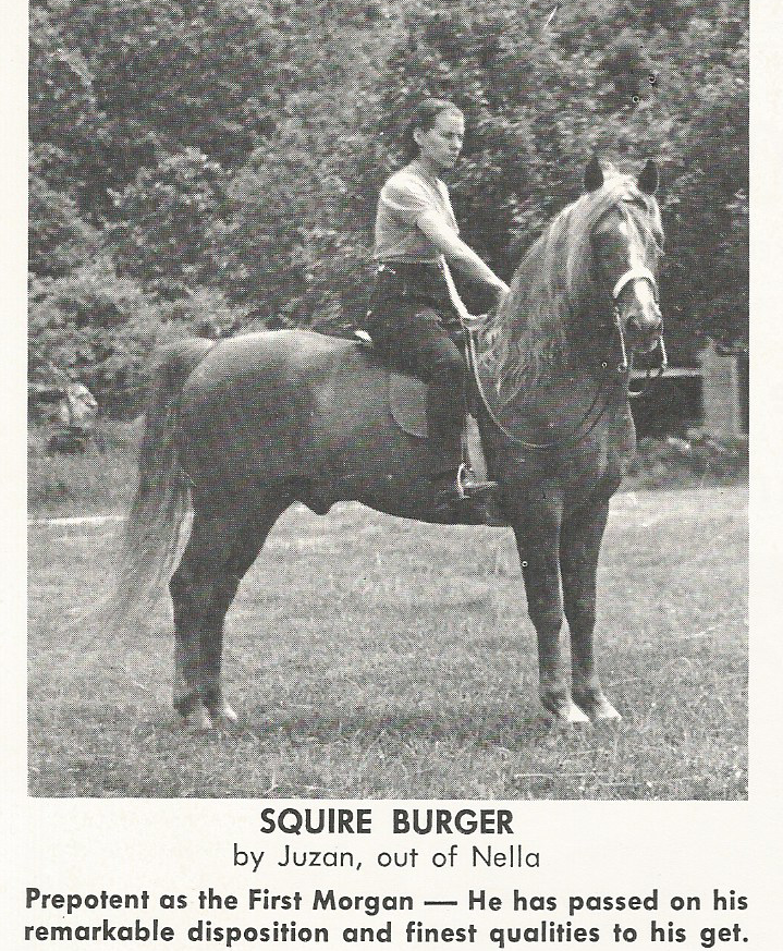 Old Morgans: Squire Burger 7/68 TMH