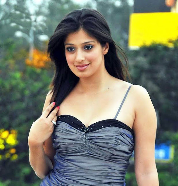 Actress Lakshmi Rai Sexy Hot Photos And Wallpapers  World -3312