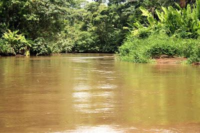 Canal de Tortuguero en Costa Rica