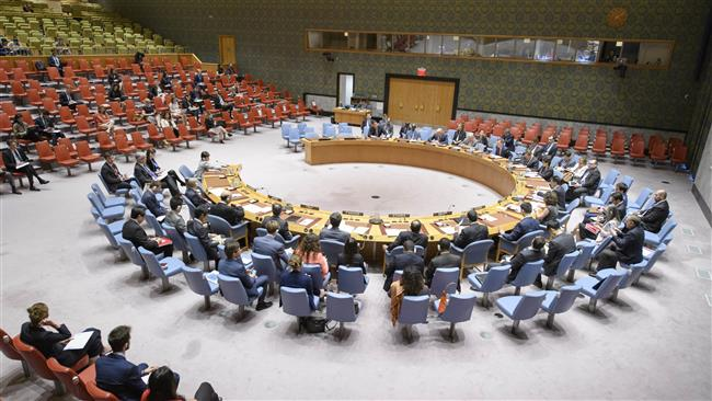 United Nations Security Council welcomes African military force deployment to fight Takfiri terrorists in the Sahel region