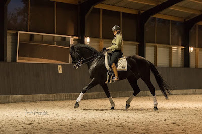 Thamar Gotthjalpsen in dressuur training