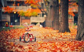 बचपन, तू बहुत याद आता है by Ankesh Kumar Shrivastava