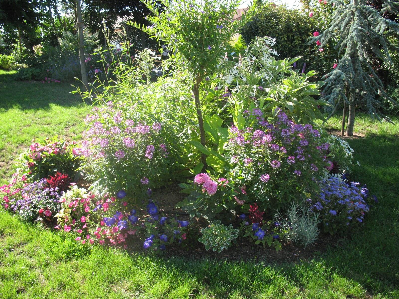Idee Petit Jardin Fleuri | Comment Amenager Son Petit Jardin Eaupinion