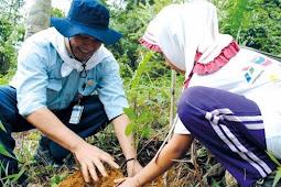 Pengelolaan lingkungan