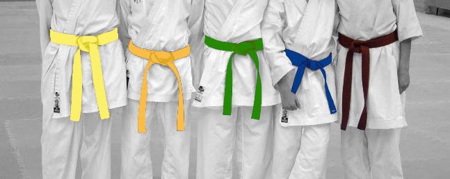 Resultado de imagen de cinturones karate