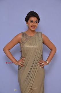Nikki Galrani in Saree 091.JPG