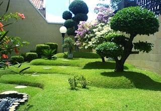 Galeri Taman - Tukang Taman Surabaya 42