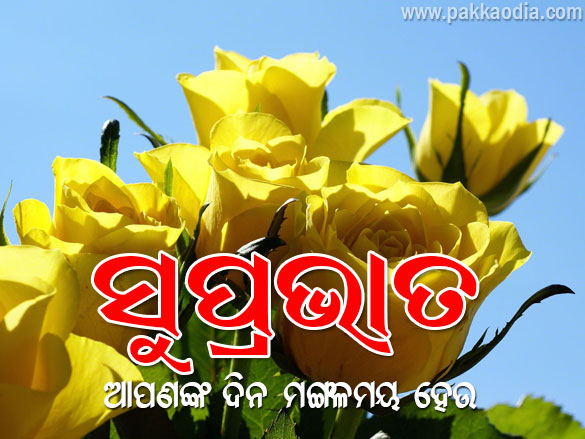 Good Morning 03 Pakka Odia