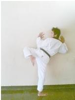 Teknik Dasar Taekwondo Untuk Pemula : teknik, dasar, taekwondo, untuk, pemula, PENGHUNI, KAMPUS:, Program, Teknik, Tendangan, Dasar, Taekwondo