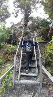 Tangga naik ke bukit