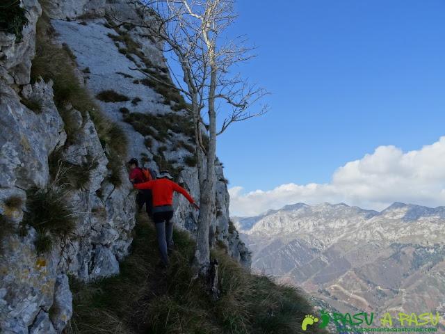Pica de Peñamellera; Terraza en al cara norte