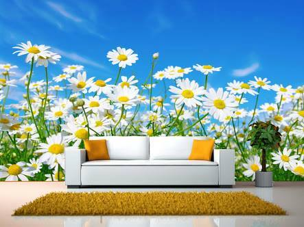 Beautiful pictures - 3D backgrounds