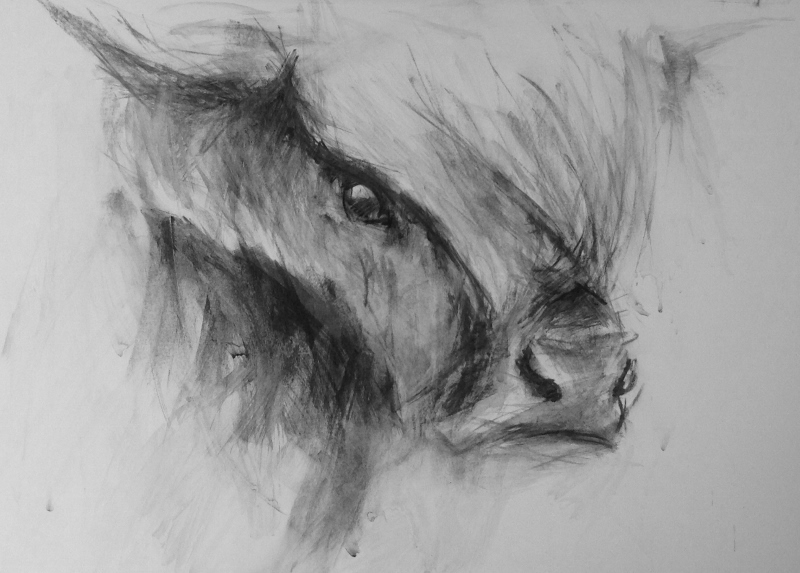 Highland cow mixed media painting, contemporary art