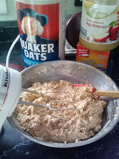 The Epicurean Explorer Oatmeal Bars
