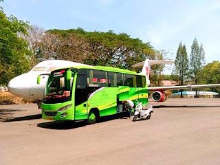 Sewa Bus Medium 31 Seat, Sewa Bus Medium, Bus Medium 31 Kursi