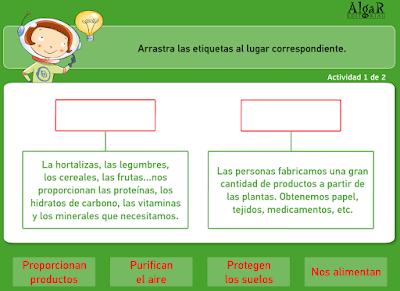 https://bromera.com/tl_files/activitatsdigitals/Natura_3c_PF/natura3_cas_u7_pag46.swf