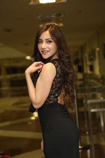 Angela Krislinzki in Transparent Black Gown at Rogue Movie Teaser Launch 1st March 2017 028.JPG