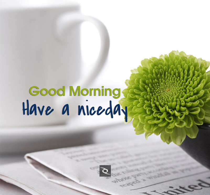 Good Morning Have A Nice Day Good Morning Wishes Hd Images