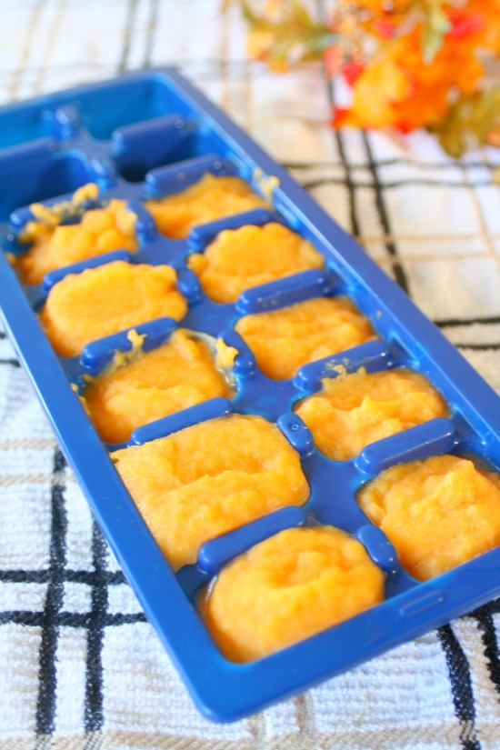 Making Your Own Baby Food Butternut Squash