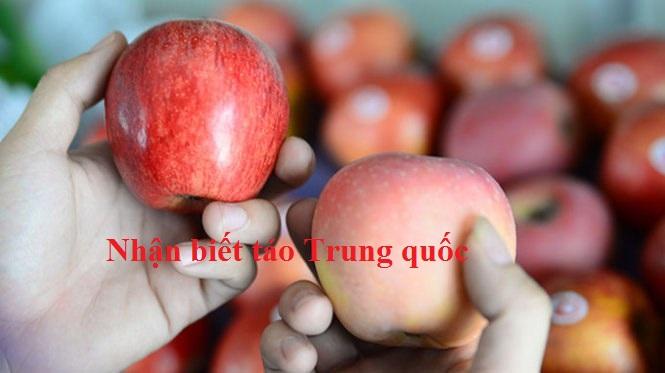 Cách phân biệt táo trung quốc với táo ta, táo Mỹ