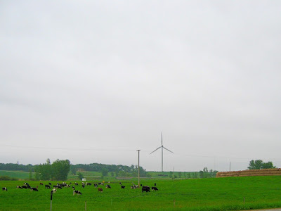 OneMinnesota needs dairy farms and wind farms