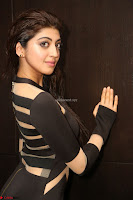 Pranitha Subhash in a skin tight backless brown gown at 64th Jio Filmfare Awards South ~  Exclusive 112.JPG