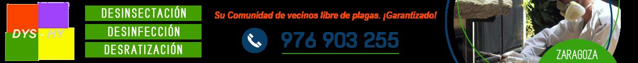 Desinfecciones Zaragoza · 976 903 255 · DYS-HY Control de plagas, fumigadores, desinsectación