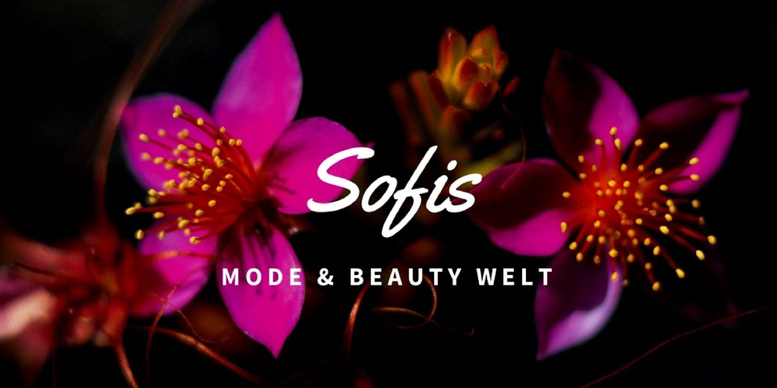 Sofis Mode & Beauty Welt