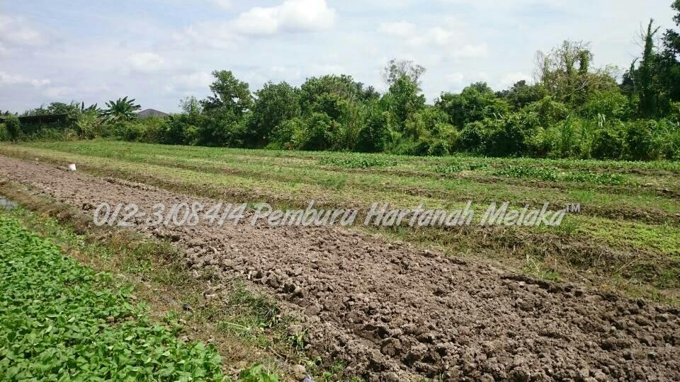 Tanah Untuk Di Jual Di Alai Melaka Pemburu Hartanah Melaka