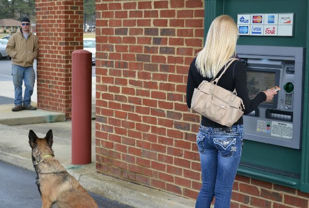 Những chú chó vào vai bảo kê máu mặt tại các cây ATM vào ban đêm