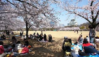 Osaka Castle - Jepang