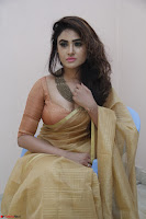 Sony Charistha in Lovely Brown Saree and Choli Spicy Pics ~  Exclusive 07.JPG