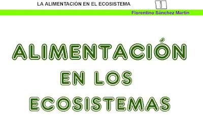 https://cplosangeles.educarex.es/web/quinto_curso/naturales_5/alimentacion_ecosistema_5/alimentacion_ecosistema_5.html