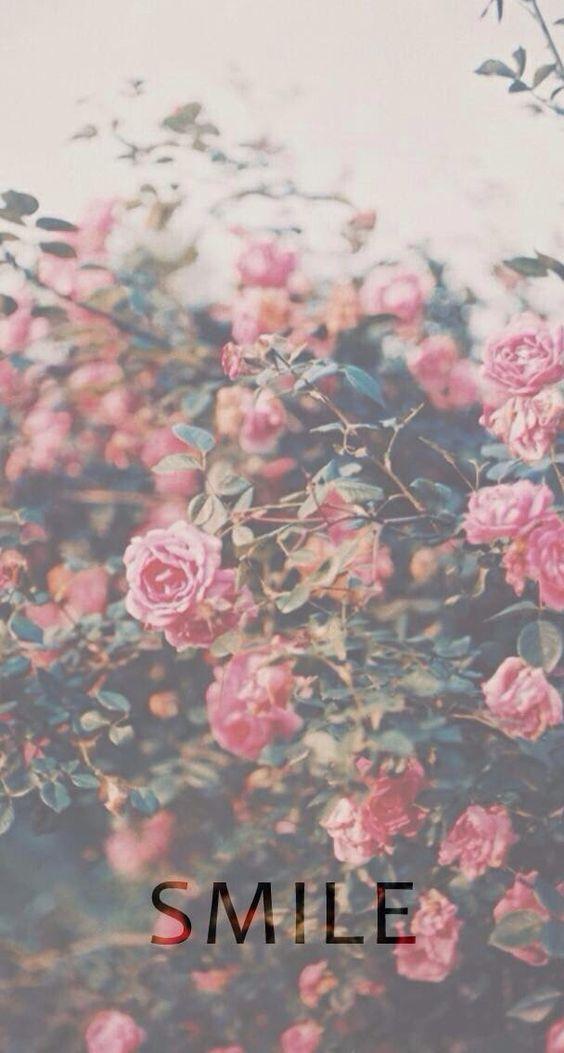 fondo celular flores vintage