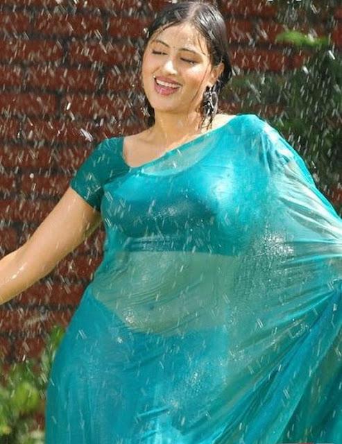 Hot Telugu actress photos navel show stils