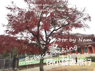 興福寺紅葉