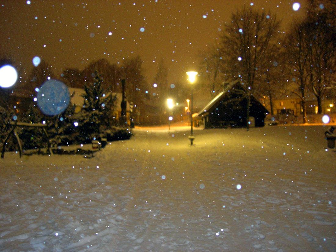 Il parco di Hässleholm sotto la neve
