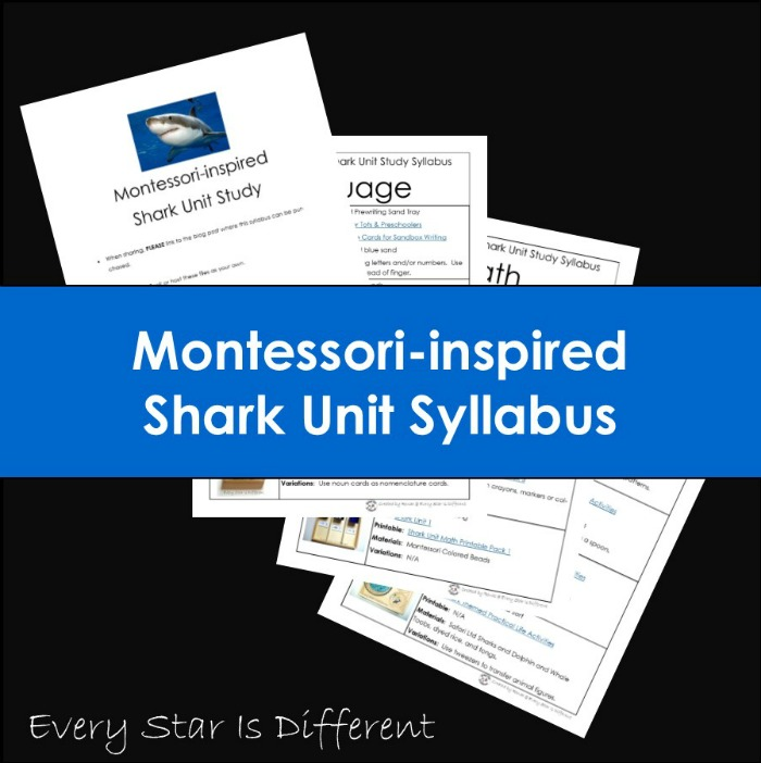 Montessori-inspired Shark Unit Syllabus