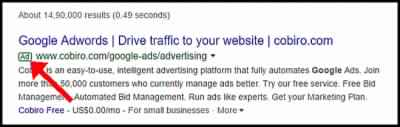 Paid Search Results Example Using Google Adwords