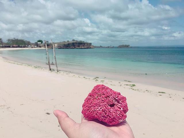 Terumbu karang berwarna pink tua, sumber ig @winnymargaretha