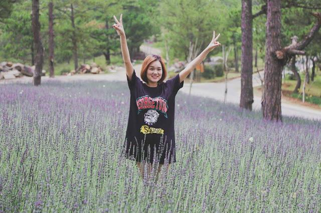 Thêm một đồi hoa oải hương (Lavender) đẹp xuất sắc ở Đà Lạt