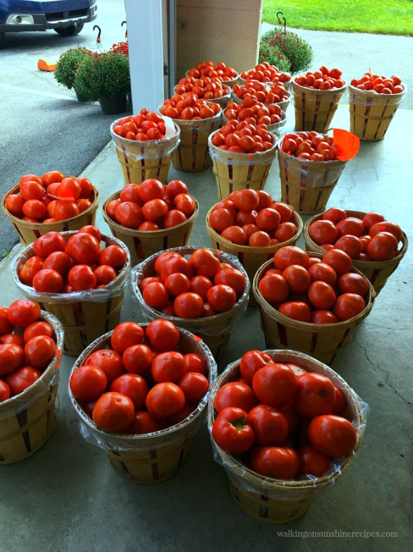 Heckman's Orchard Tomatoes Labor Day 2017 from Walking on Sunshine Recipes