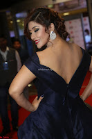 Payal Ghosh aka Harika in Dark Blue Deep Neck Sleeveless Gown at 64th Jio Filmfare Awards South 2017 ~  Exclusive 049.JPG