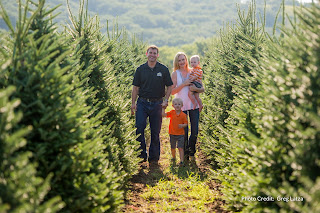 a brunette man, blonde woman, and their two blonde children who are a toddler and a preschooler, walk between rows of pine trees at Riverview Christmas Tree Farm near Canton, South Dakota