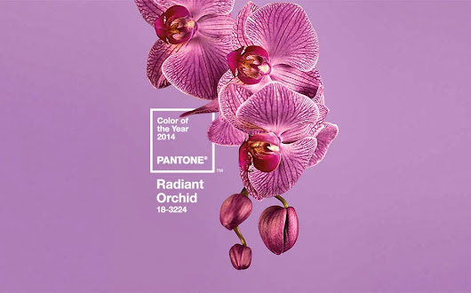 Announcing....Pantone's 2014 Color of the Year - Radiant Orchid