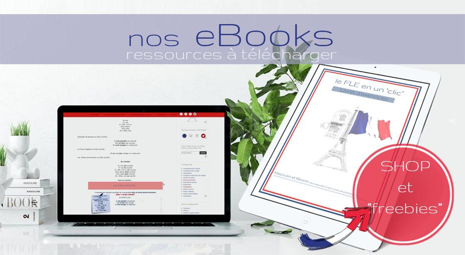 CoursIntensifs personnalises français FLE exercises books download shop