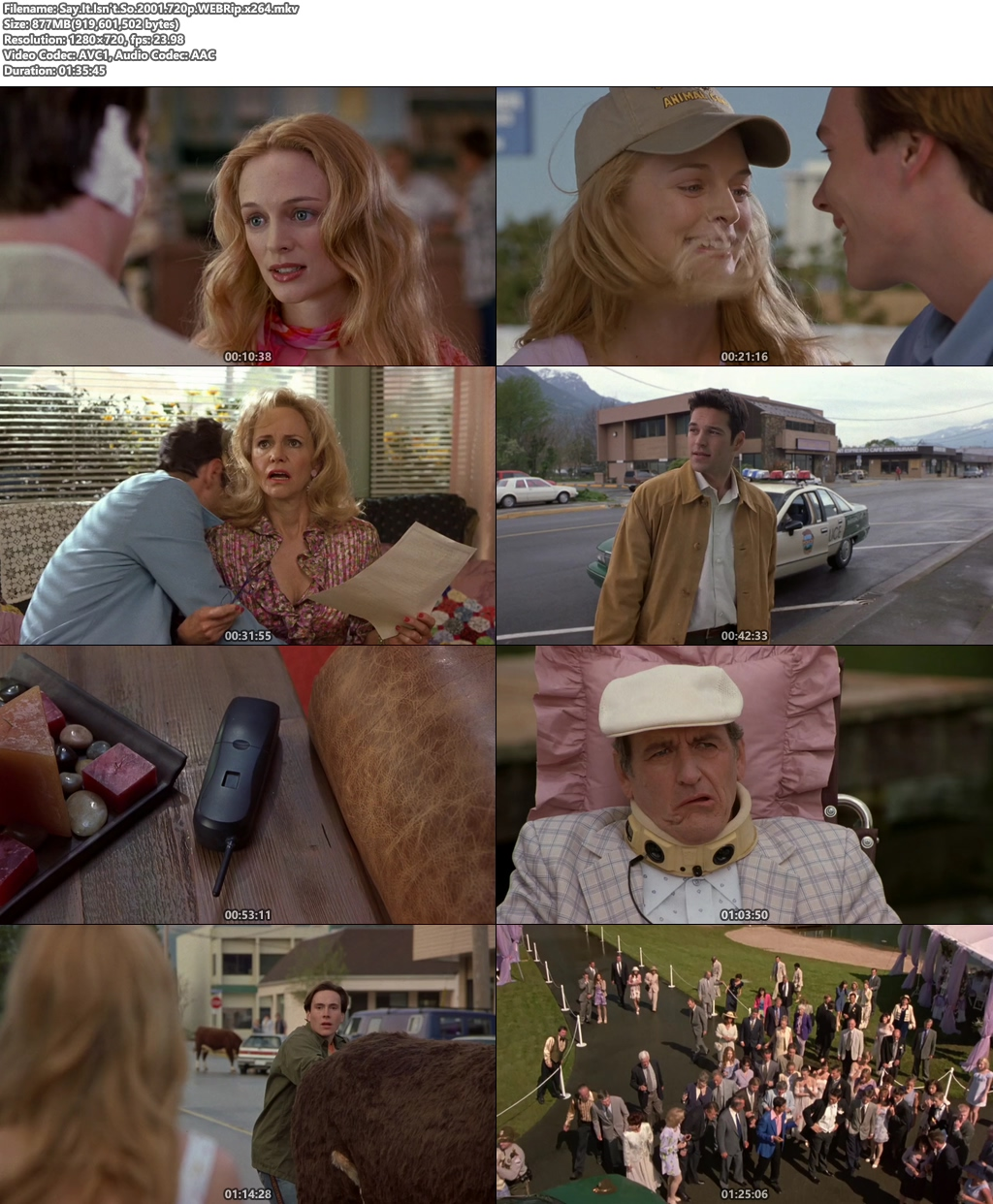 Say It Isn't So 2001 720p WEBRip x264 | 480p 300MB | 100MB HEVC Screenshot